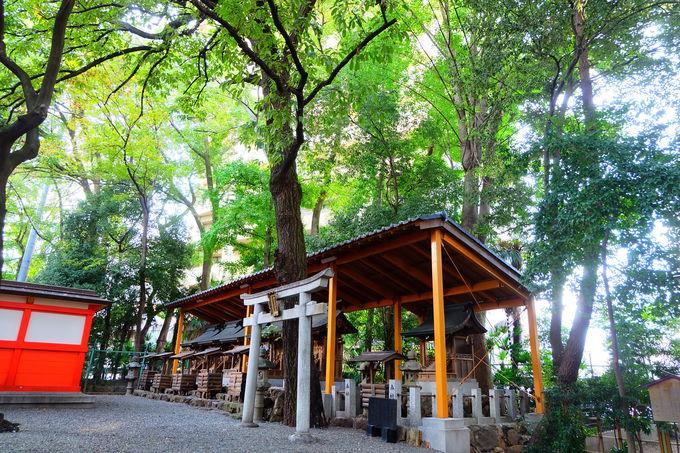 鎮座は135年以前と歴史ある神社