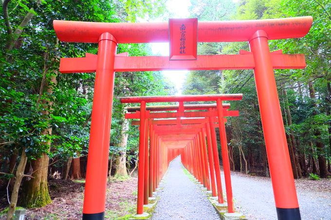 まっすぐに延びる朱色の鳥居と南宮稲荷神社