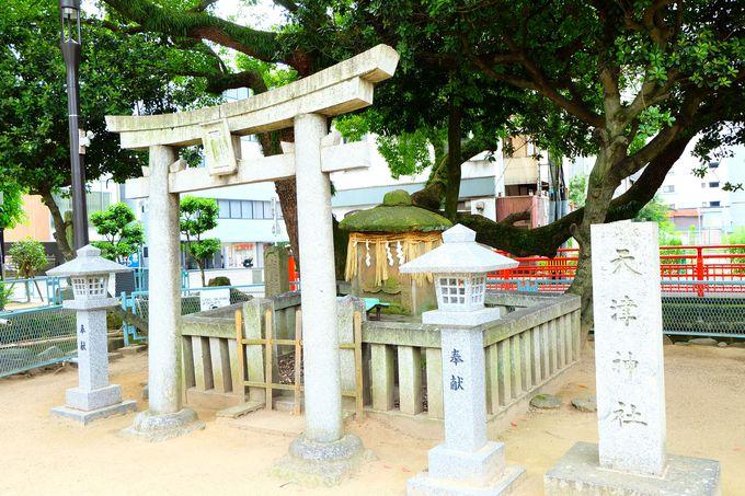 筑前一宮「住吉神社」は祓え・浄化の神様