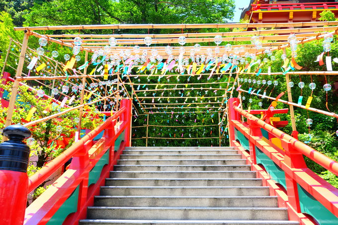 豪華絢爛!佐賀「祐徳稲荷神社」の華やかパワーをチャージ!