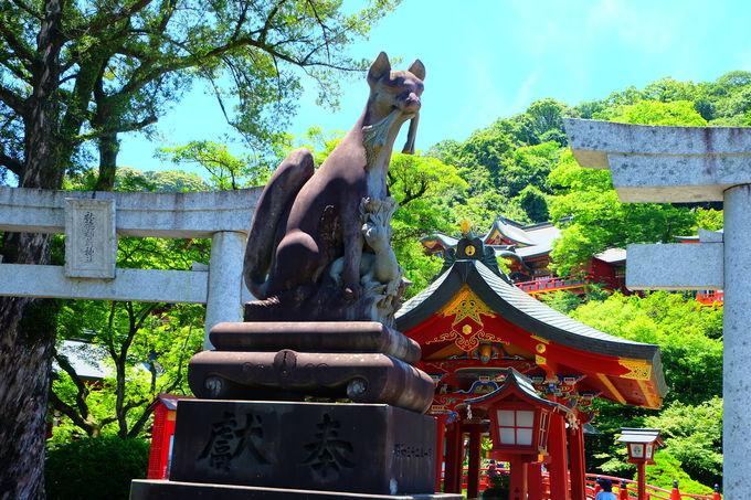 稲荷神社ならでは!狛犬ではなく狛狐がお出迎え