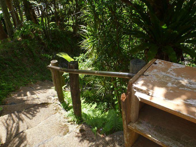 「裏見ヶ滝温泉」に入浴する前に