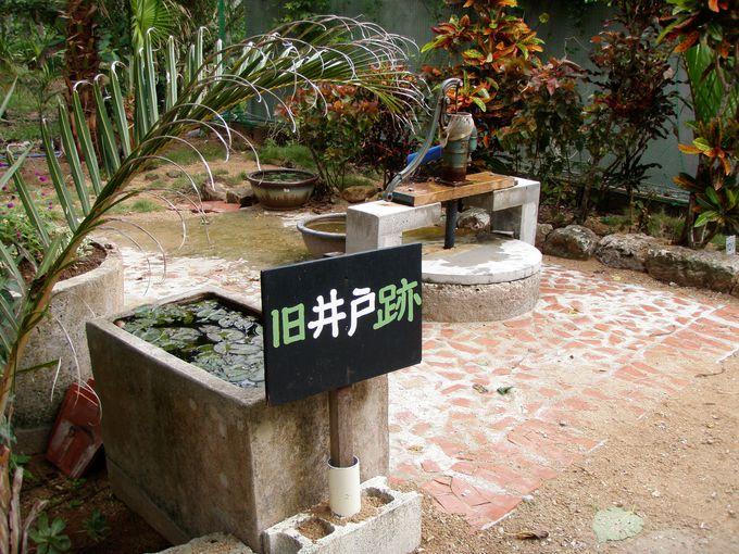 由布島の歴史