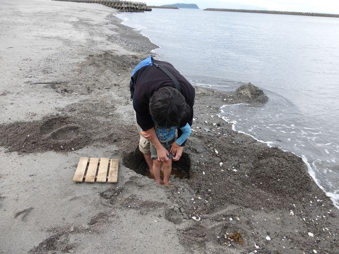 海水を入れ泥湯状態の足湯を楽しむ