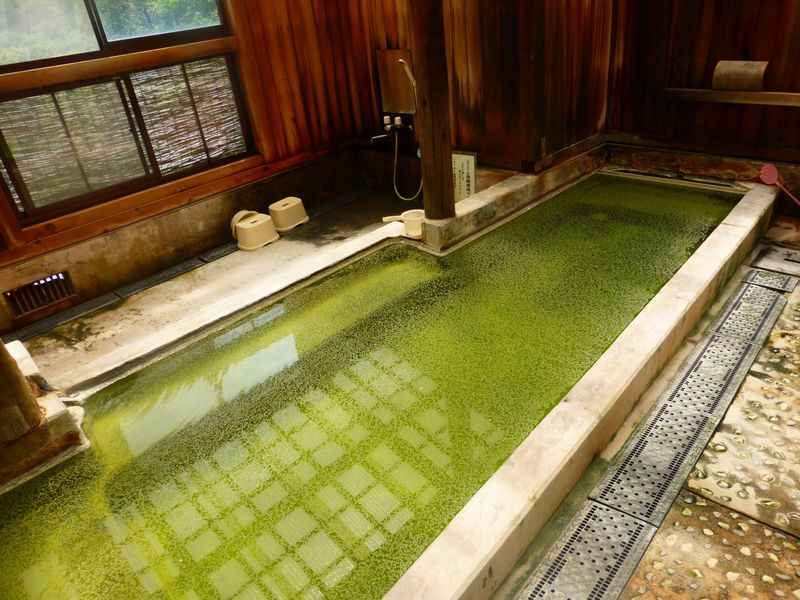 岩手の秘境・国見温泉「森山荘」は温泉通も唸るグリーンの湯が魅力
