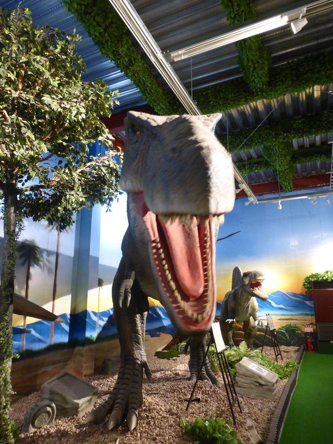 恐竜にご対面!