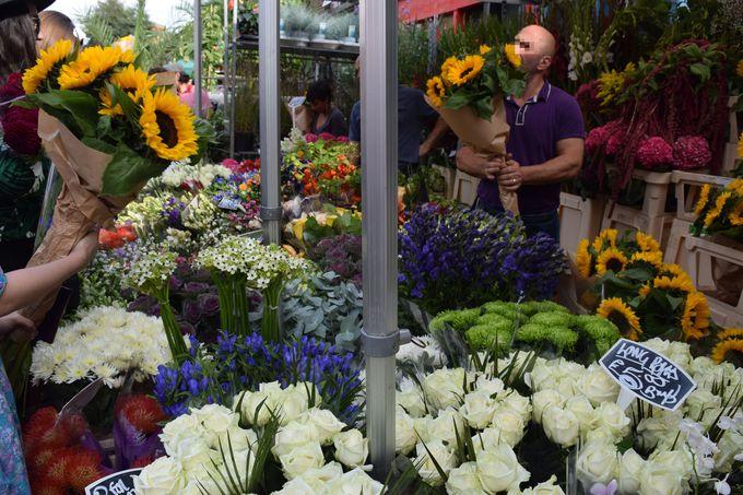 美しく咲き誇る季節の花々に癒されよう!