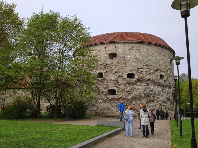 「太っちょマルガレータ」でエストニアの海洋歴史を学ぼう