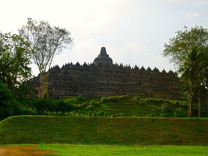 約千年の間、密林で火山灰に埋もれていた遺跡