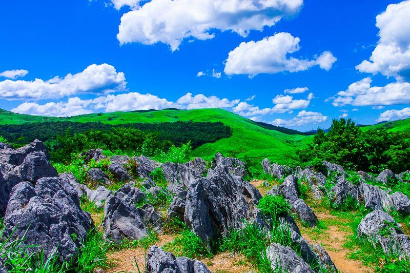日本最大級のカルスト台地!秋吉台で大自然の造形美を堪能しよう!