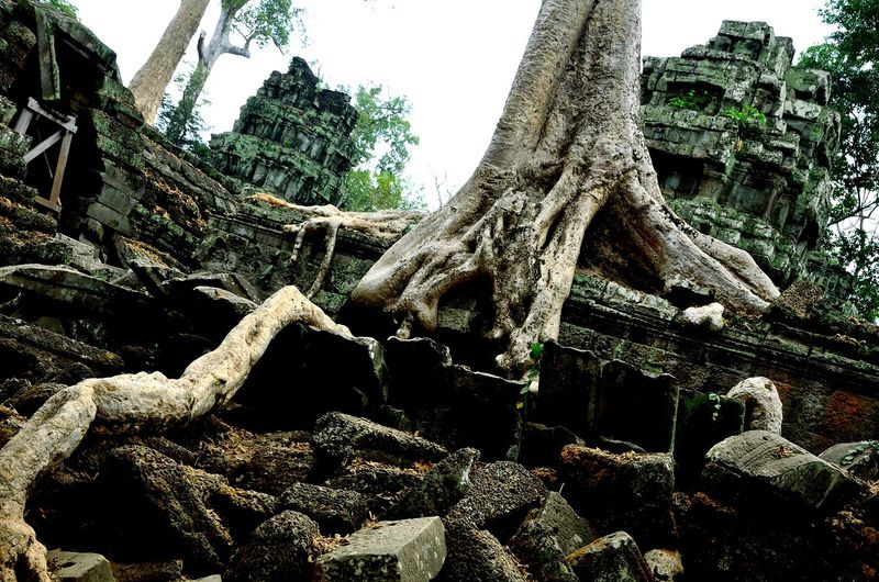 ワット アンコール アンコールワット遺跡群に登場する神々(ヒンドゥー教の神々)について /