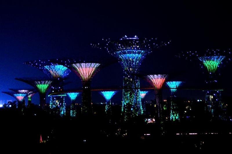 シンガポールの夜を彩る、18本の巨大ツリー