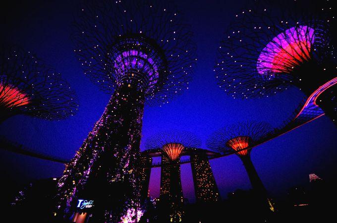 6.シンガポール