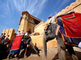 インド・ジャイプールの世界遺産アンベール城!象タクシーも楽しい北インド屈指の観光名所!