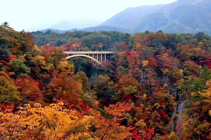 フォトジェニックな大深沢橋