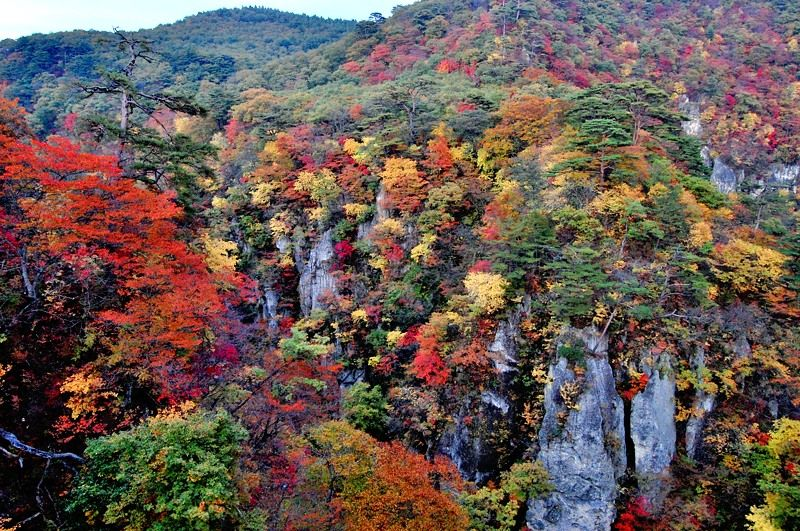 色とりどりの紅葉に飾られた圧巻の秋景色