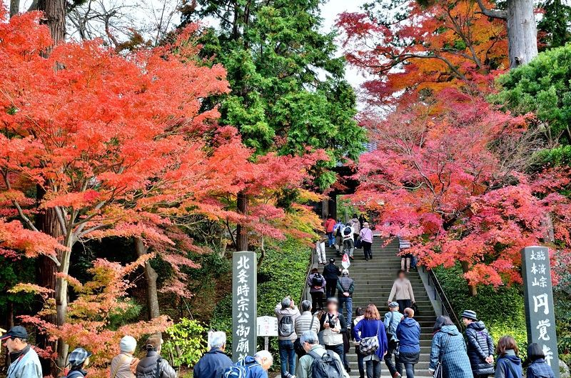 鎌倉五山第二位「円覚寺」の歴史
