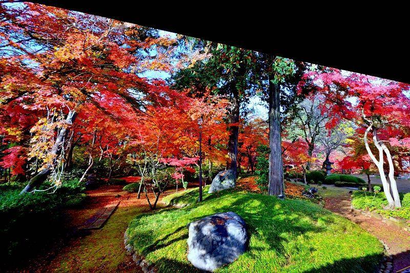 埼玉の紅葉名所といえばここ!川越「喜多院」で秋の色を満喫しよう