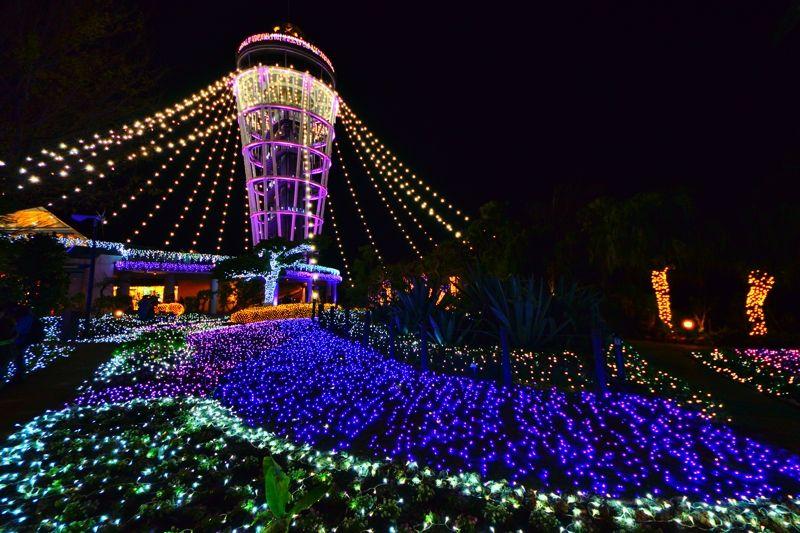 江ノ島のイルミネーションが凄い!「湘南の宝石」で輝く鎌倉へ行こう!