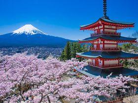 これぞ日本!新倉山浅間公園で見る桜・忠霊塔・富士山の大絶景!