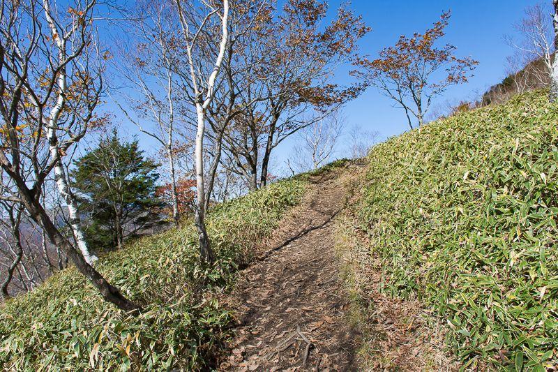中禅寺湖を見下ろす「半月山展望台」へ