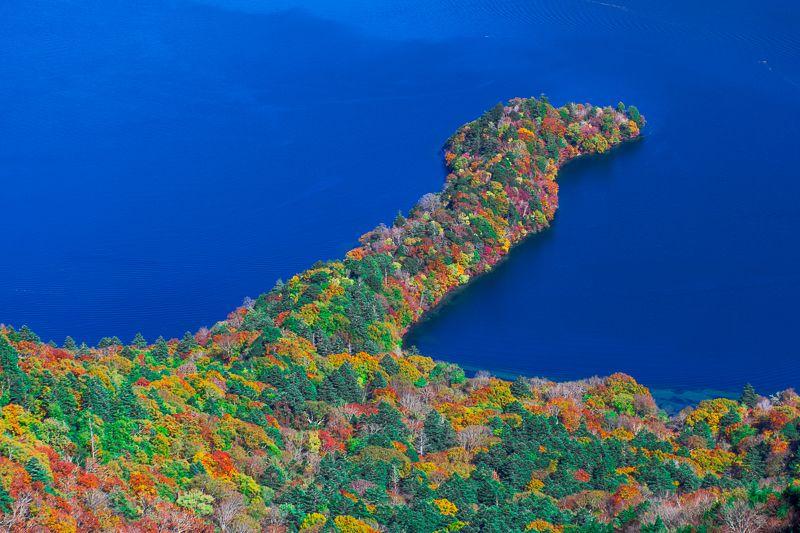 美しすぎる!「八丁出島」の紅葉