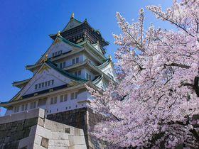 大阪のおすすめ桜スポット8選 城や公園にライトアップも!