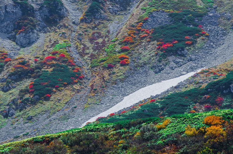 室堂から望む立山と紅葉