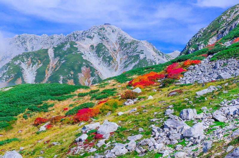立山・室堂の様々な紅葉鑑賞ポイント