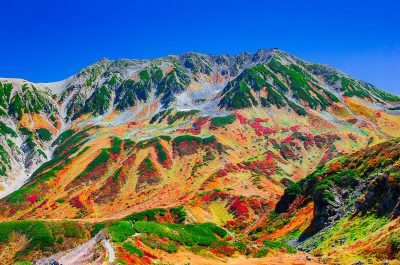 立山・室堂は紅葉の名所!富山県が誇る秋の大絶景が美しすぎる!