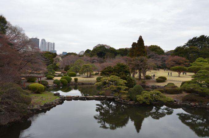 訪日外国人を魅了する、新宿御苑の日本庭園