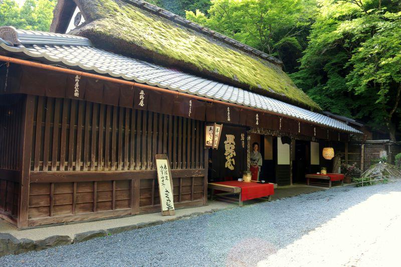 代々続く名物・鮎料理に舌鼓!京都嵯峨野の鮎茶屋「平野屋」