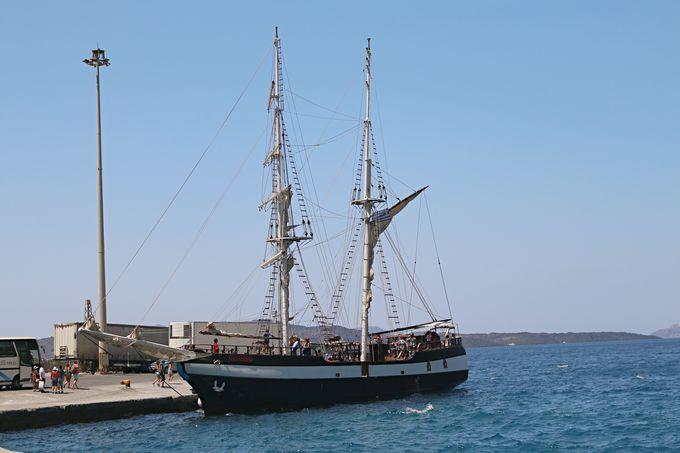ツアー参加し、港から船で出発しよう