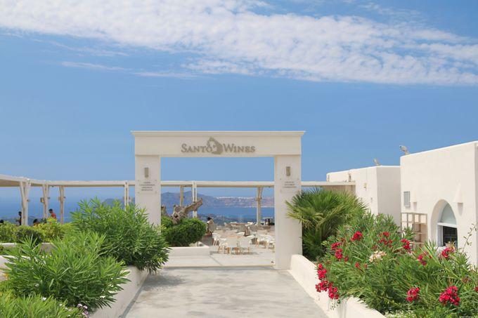 サントリーニ島を代表するワイナリー