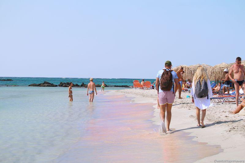 世にも珍しいピンクサンド!エラフォニシビーチ