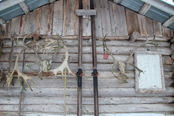 トナカイ牧場でファームステイも出来ます