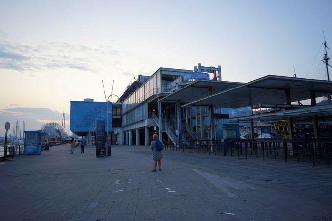 大本命!ジェノバ水族館を訪問