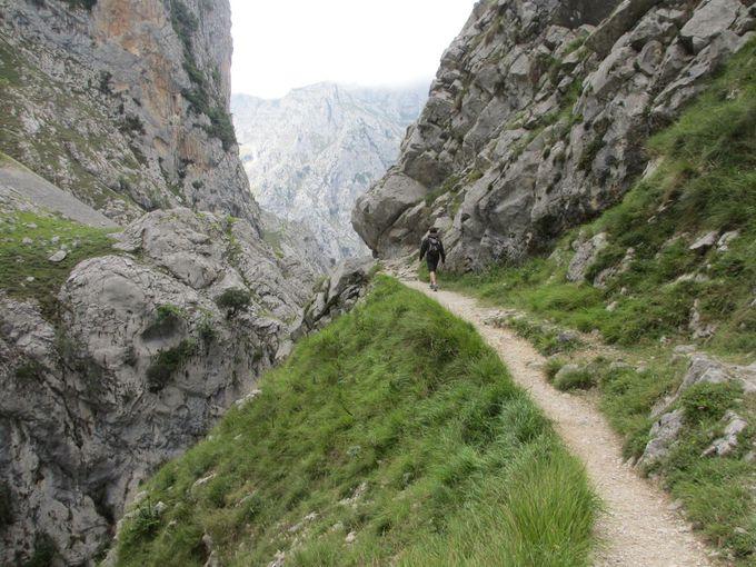 歩くからこそ味わえるピコス・デ・エウロパの風景