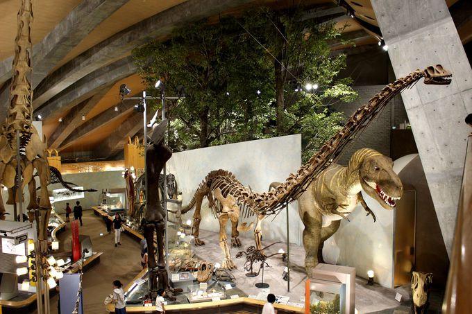 あっ動いた!大迫力の恐竜展示がスゴイ!