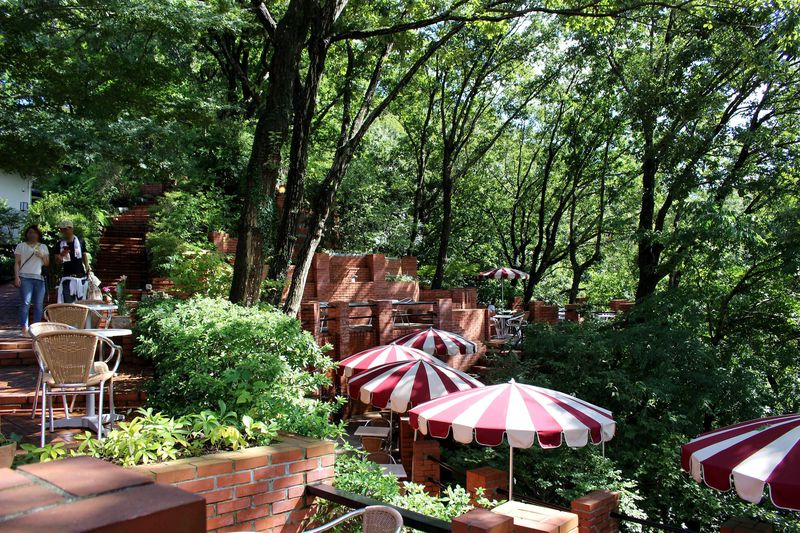 鎌倉にラピュタの城を発見!森に浮かぶ「樹ガーデン」で至福のカフェタイム