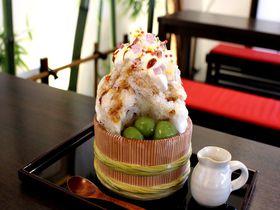 川越観光で食べたい「かき氷」8選!松月氷室や蔵元八蔵の天然氷も