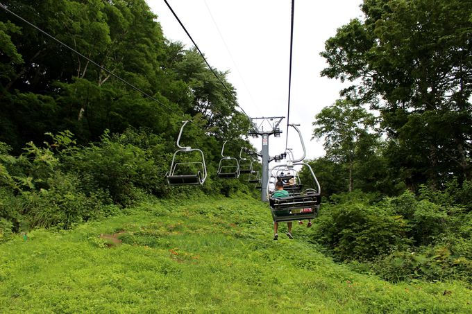 里山遊びを楽しもう!「高山植物園・アルプの里」