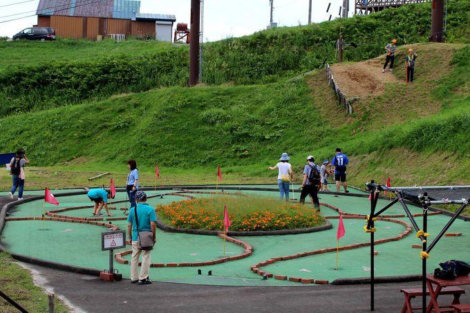 大人も遊べ!湯沢高原の風を感じよう!