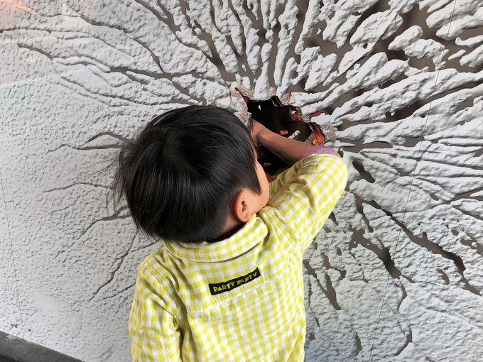 小江戸川越に誕生!「トリック3Dアート in COEDO」