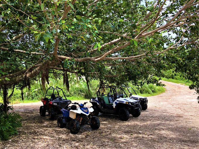 参加者限定!グアム北東部の絶景をひとり占め!