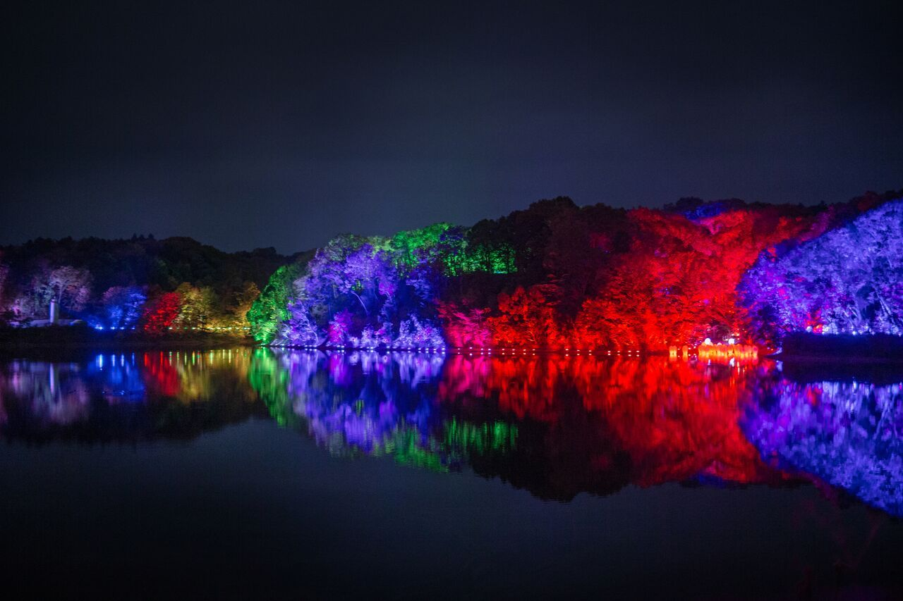 メッツァビレッジを幻想的に彩る「チームラボ 森と湖の光の祭」