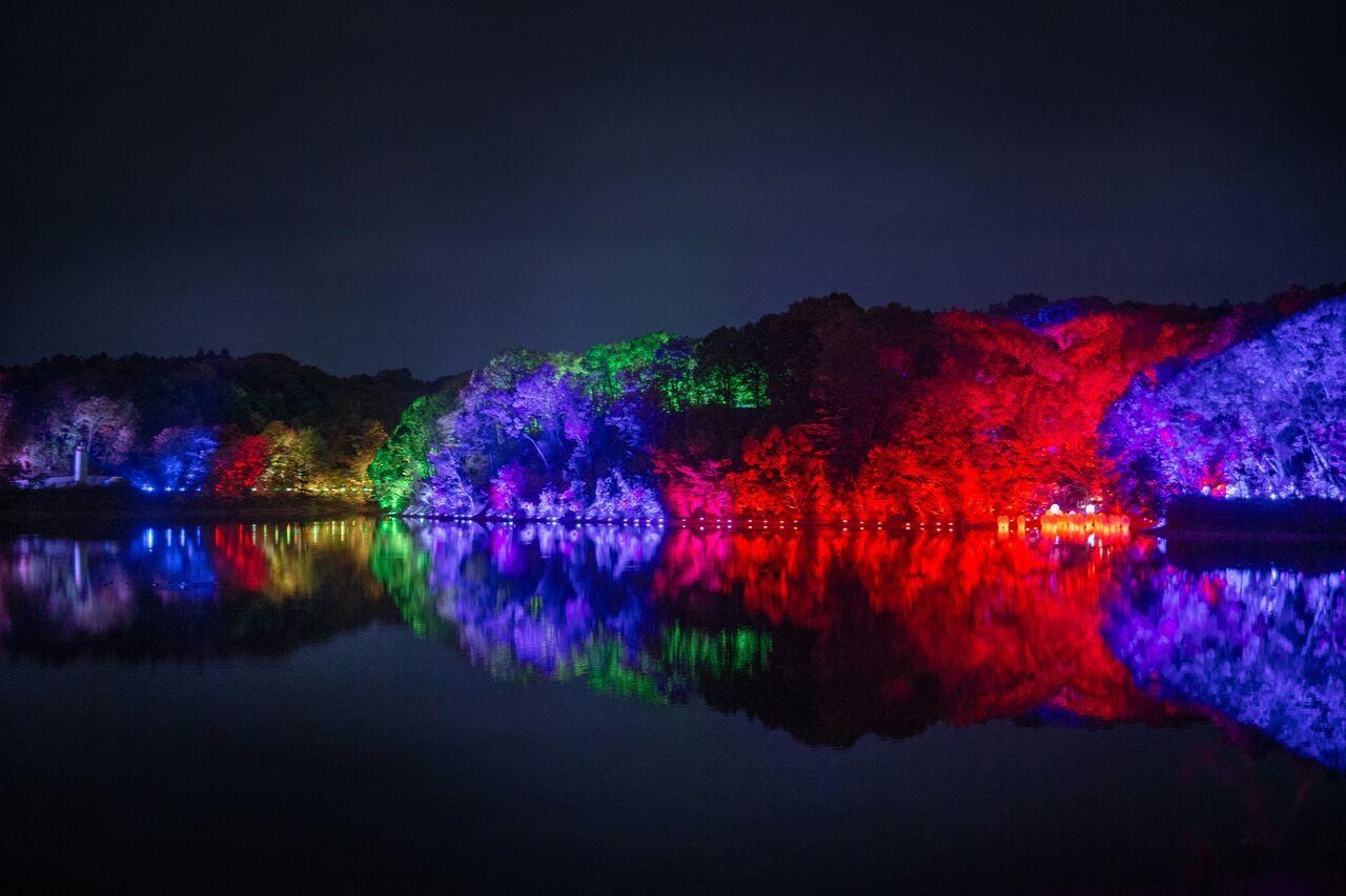 飯能・メッツァビレッジ「チームラボ 森と湖の光の祭」湖が光のアートに包まれる