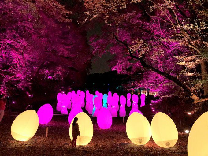 「チームラボ 森と湖の光の祭」も開催中!