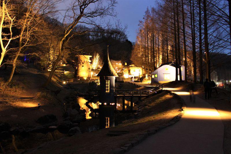 豊かな闇を感じるライトアップ「トーベ・ヤンソンあけぼの子どもの森公園」