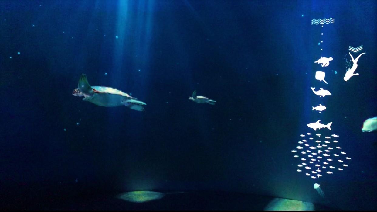 深海の世界を五感で楽しめる演出